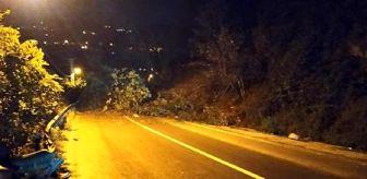 Çamlıhemşin: Rize'de heyelan nedeniyle kapanan yol ulaşıma açıldı