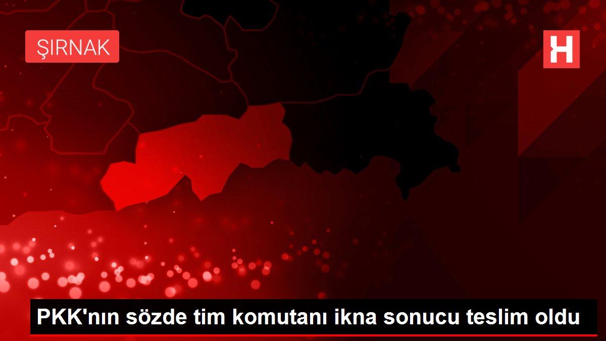 PKK'nın sözde tim komutanı ikna sonucu teslim oldu