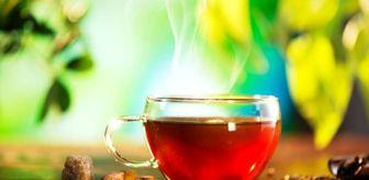 Omega 3: Sumak çayı nedir? Sumak çayının faydaları nelerdir? Sumak çayı nasıl yapılır?