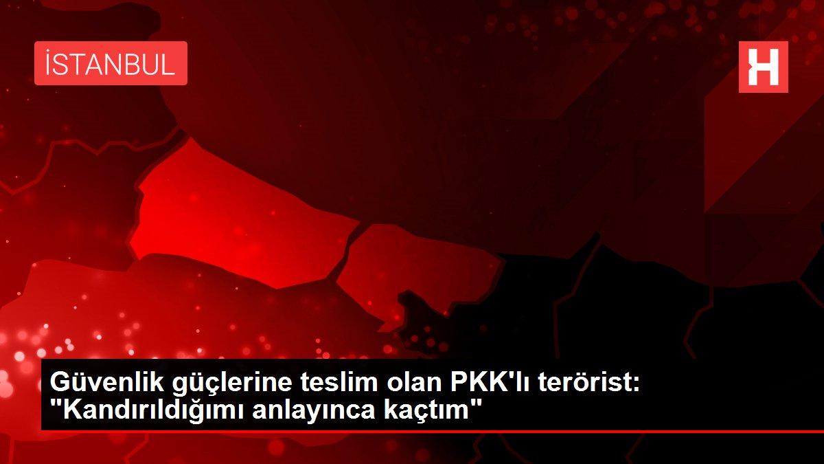 Son dakika haberi... Güvenlik güçlerine teslim olan PKK'lı terörist: