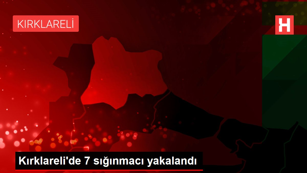 Kırklareli'de 7 sığınmacı yakalandı