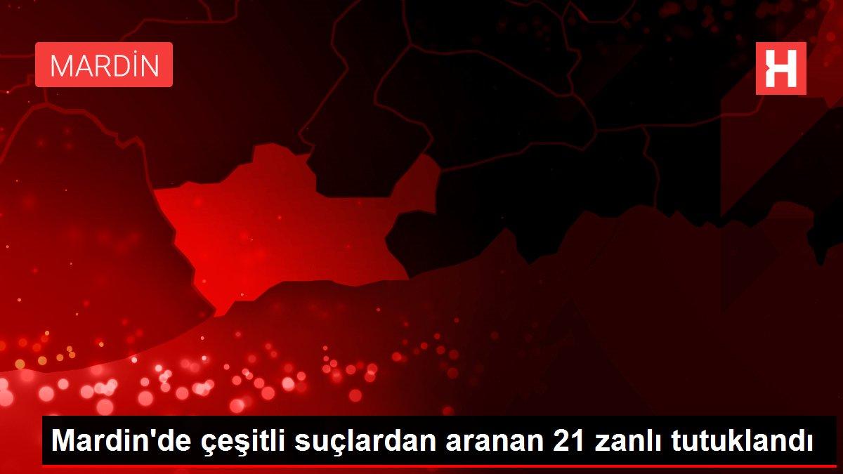 Mardin'de çeşitli suçlardan aranan 21 zanlı tutuklandı