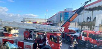 Orhanlı Mahallesi: Son dakika haberleri... Tuzla'da sünger fabrikasında yangın
