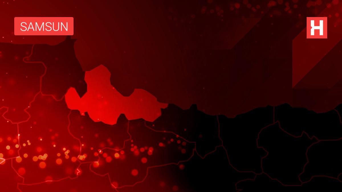 Bafra'da 36 kişiye manda combası verildi