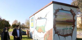 Manisa: Manisa'daki trafolar sanat eserine dönüştü