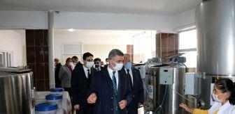 Malatya: Vali Baruş'tan Hekimhan'a ziyaret