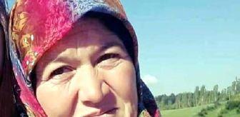 Bolu: Son dakika haberi | Başörtüsü yem karma makinesine dolanan kadın öldü
