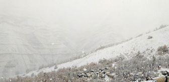 Şırnak: Kar yağdı dağda mahsur kaldılar