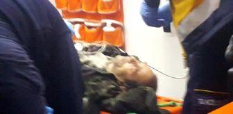 Aydın: Kamyonun çarptığı motosikletli öldü