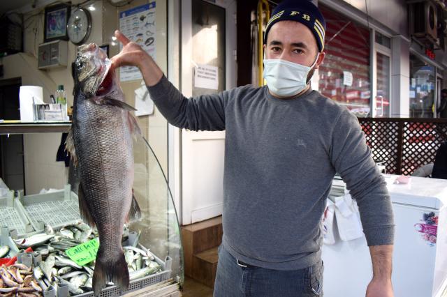Karadeniz'de ağlara takılan 8 kilogramlık levrek 1.040 liradan satışa sunuldu