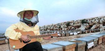 Edirne: Dünya turuna çıkan Alman, arı kovanı üzerine gitar çaldı