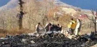 Seferli: Ordu'da yangın: 1 ölü