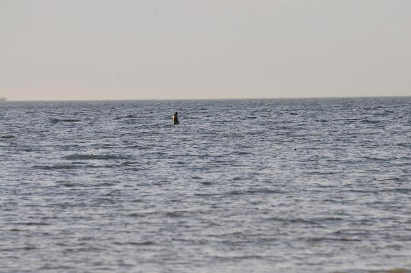 İzmit Körfezi'nde kaçak toplanan midye için uyarı