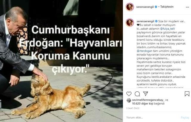 Seren Serengil, Erdoğan ile ilgili paylaşımına inanmayanlara cevap verdi: Ablam 15 yıldır kadın kollarında çalışıyor