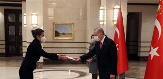 Meteksan Savunma: Cumhurbaşkanı Erdoğan, güven mektuplarını kabul etti