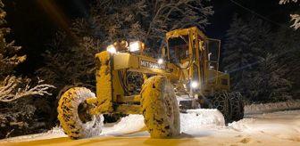 İyidere: Doğu Karadeniz'de kar yağışı etkili oluyor