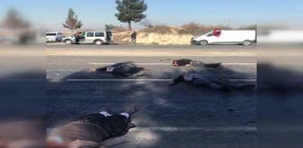 Bozova: Sokağa çıkma kısıtlamasında katliam gibi kavga: 5 ölü, 3 yaralı