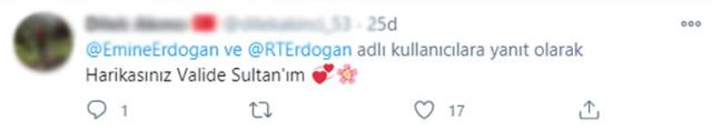 Cumhurbaşkanı Erdoğan'ı mesaiye Emine Erdoğan ve baktığı 'Leblebi' uğurladı