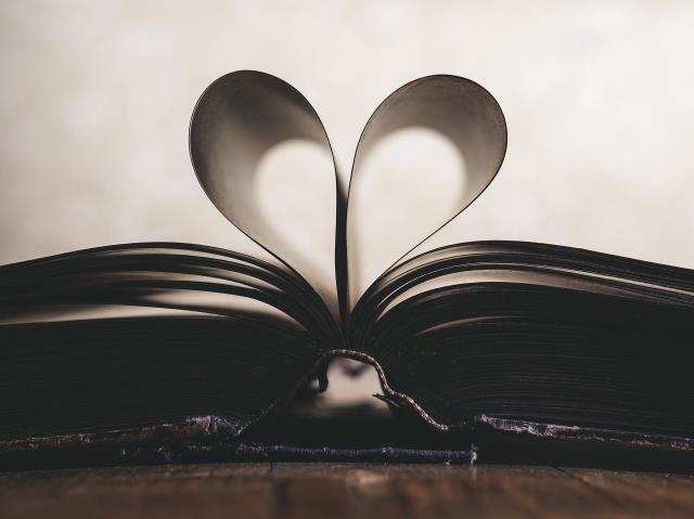 Yılbaşında okunacak ve hediye edilebilecek kitap önerileri! Yılbaşı tatili için okunabilecek romanlar ve kitaplar!
