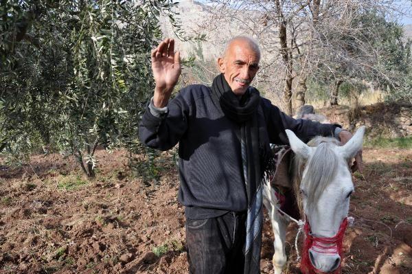 40 yıldır engebeli arazilerde atla çift sürerek geçimini sağlıyor