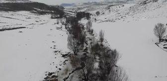 Taşlıçay: Buz tutan Aşağı Toklu Şelalesi'nin güzelliği drone ile görüntülendi