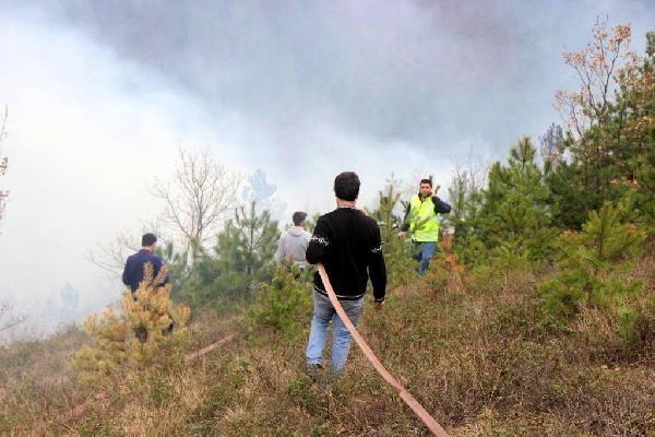 Kastamonu'da iki orman yangını