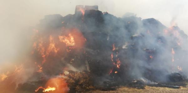 Kahramanmaraş'ta çiftlikte yangın