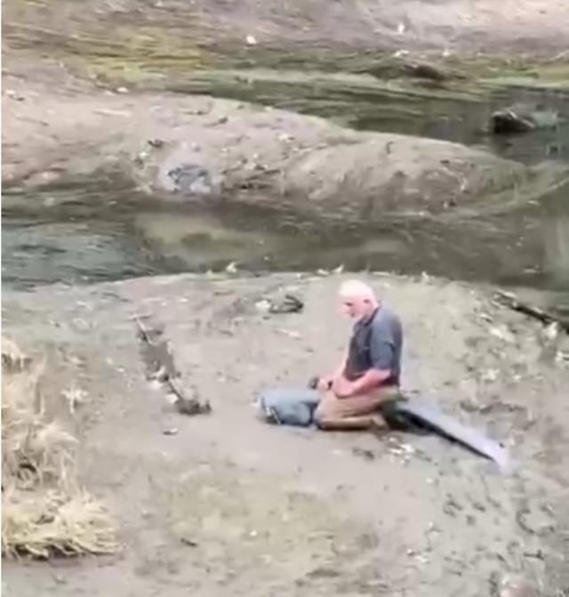 Yaşlı adam, boyu kadar balığı suya girerek eliyle yakalayıp kıyıya çıkardı