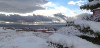 Muş: Kar yağışı hayatı olumsuz etkiliyor