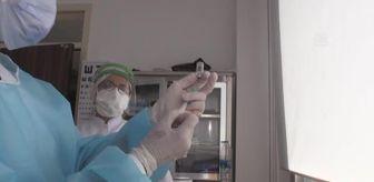 Çukurova Üniversitesi: Son Dakika | Koronavirüs Bilim Kurulu Üyesi Gündüz'den 'CoronaVac' için 'Tedirginlik ve tereddüde gerek yok' açıklaması