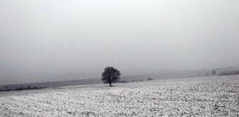 Tekirdağ: Tekirdağ'ın yüksek kesimlerinde kar yağışı (2)