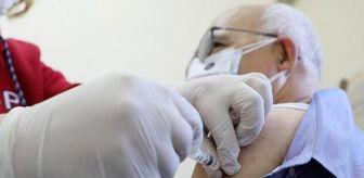 Ticaret Merkezi: Brezilya, Çin'in geliştirdiği koronavirüs aşısına acil kullanım onayı verdi