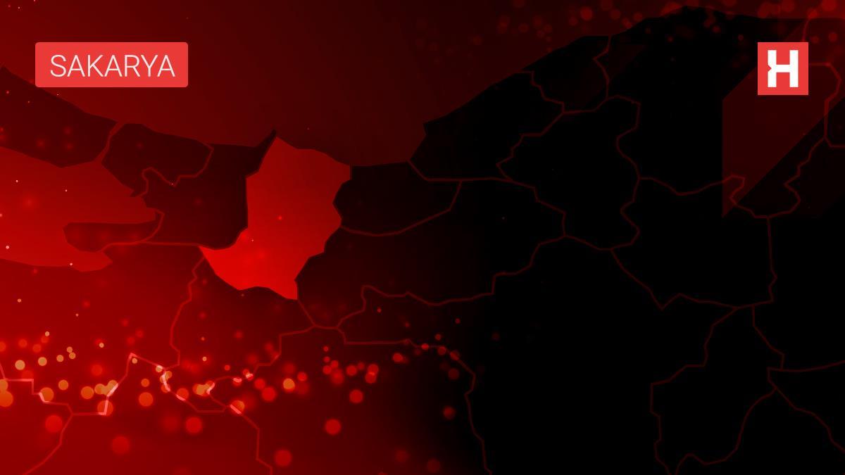 Karasu'da refüje çarpan aracın sürücüsü yaralandı