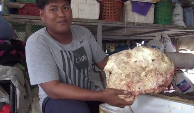 Yerde bulduğu kaya parçası sayesinde 2 milyonluk servete kondu