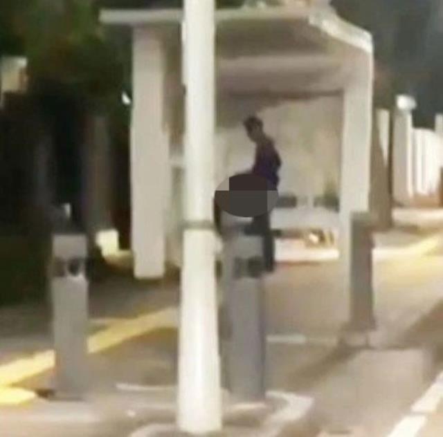 Genç çift, uyarılara kulak tıkayıp otobüs durağında ilişkiye girdi