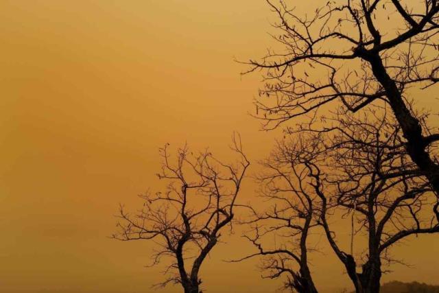 Avrupa'da sarı kar endişe yarattı! Yüzlerce kişi Meteoroloji'yi arayıp 'Dünyanın sonu mu geldi?' diye sordu