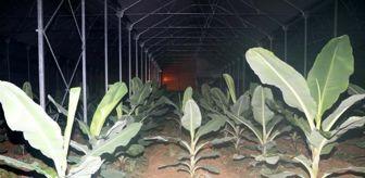 Yücel Bulut: Antalya'da üretici don nöbetinde (2)