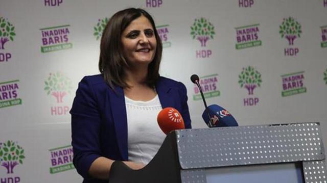 Son Dakika: Bakan Soylu, Gara'ya giden HDP'linin Ağrı Milletvekili Dirayet Dilan Taşdemir olduğunu açıkladı