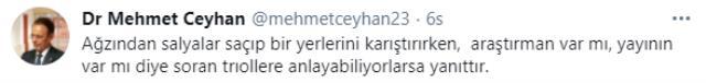'Araştırman var mı, yayının var mı?' sorularına Prof. Dr. Mehmet Ceyhan, belgeyle yanıt verdi