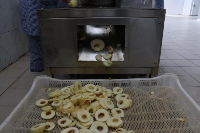 İtalya'da gördüğü meyve ve sebze kurutma tesisini Niğde'de kurarak yurt dışına açıldı