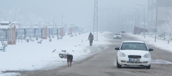 Doğu'da en soğuk il Ağrı; eksi 19 derece