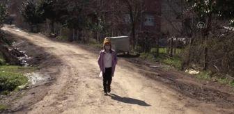 İkizce: 9 yaşındaki kızın sırtında taşıyıp veterinere götürdüğü köpeğine kulübe ve mama desteği