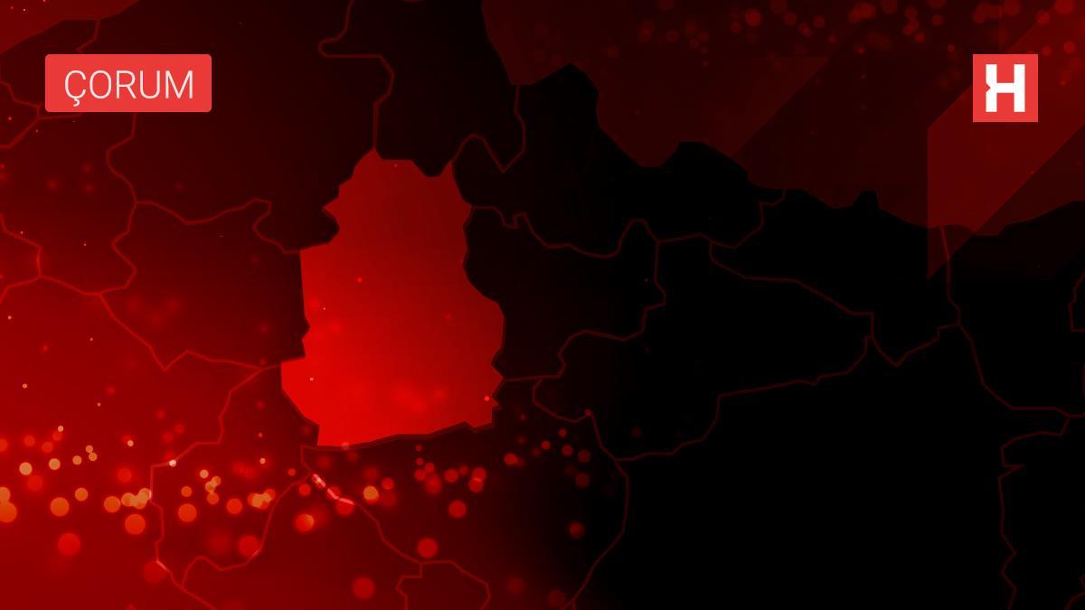 Çorum'da bir köy Kovid-19 nedeniyle karantinaya alındı