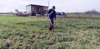 İsmail Özkan: Süt üreticisi devlet destekli ektiği otla girdileri düşürdü, kazancını artırdı