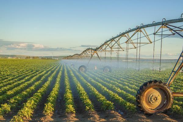 SALKONDER Başkanı Turan: Sözleşmeli tarım gıda israfını önler