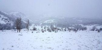 Doğu Karadeniz: Bayburt'un yüksek kesimlerinde Mart karı etkili oldu
