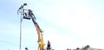 Ceyda Çetin Erenler: Altıntaş'ta mesire alanı enerji nakil çalışmaları