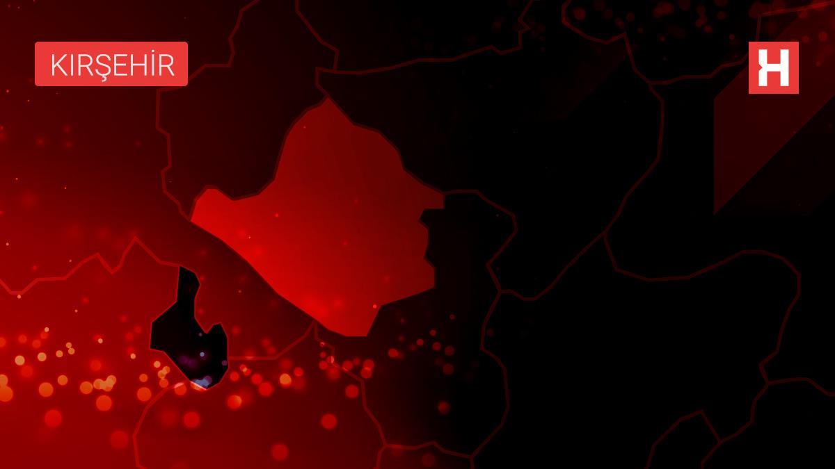 Kaman'da şarampole devrilen otomobilin sürücüsü yaralandı