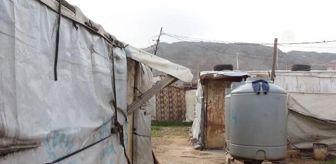 Dünya Gıda Programı: Lübnan'daki Suriyeliler ülkelerindeki iç savaşın 10. yılında çadır kamplardan kurtulma hayalleri kuruyor (2)