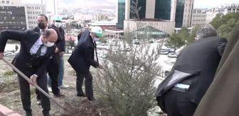 Osman Erbaş: Son dakika haberi | Helikopter kazasında şehit olan askerler için fidan dikildi